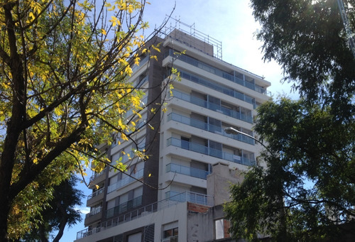 Alquiler De Oficina  - Punta Carretas